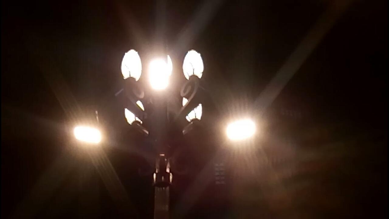 Lotus-Street-Lamp.jpg