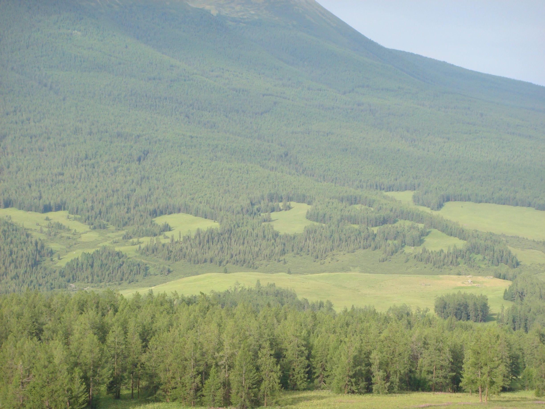 Altai-MountainsI.jpg